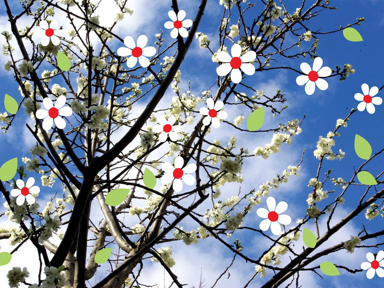 Allegorie du printemps sacr blogueur - Taille du pecher au printemps ...