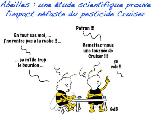 SYNGETA NE FERA PLUS SON MIEL AVEC LE CRUISER dans Soutiens abeilles-etude-scientifique-prouve-limpact-ne-L-J1ccQ0