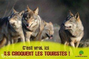 DES TOURISTES CROQUÉS PAR DES LOUPS dans Terroirs campagne-communication-gueret-creuse-2012-300x199