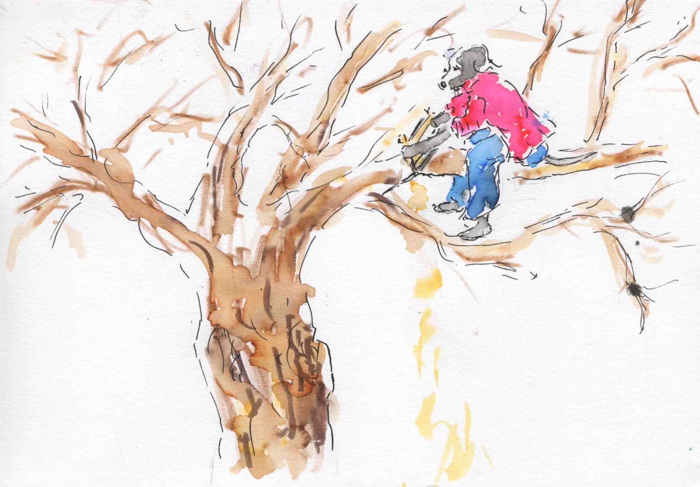 scier la branche