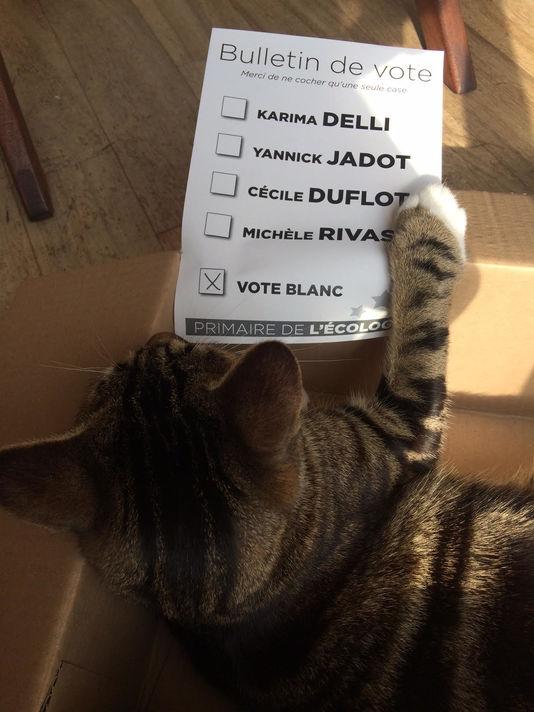 5014775_6_3fdb_vote-de-gaston-lecat-a-la-primaire-d-eelv_dd6a3b70f2fbfaaa67aa7035b3d98270